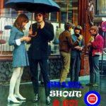 shake-shout-go radiolux